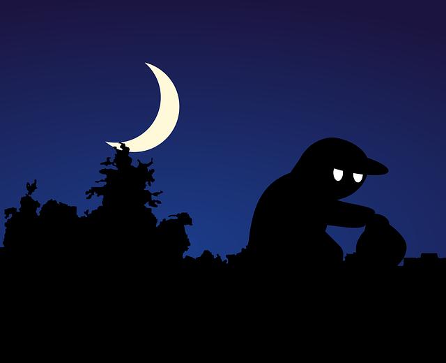 Thief Night Theft - Free image on Pixabay (757849)