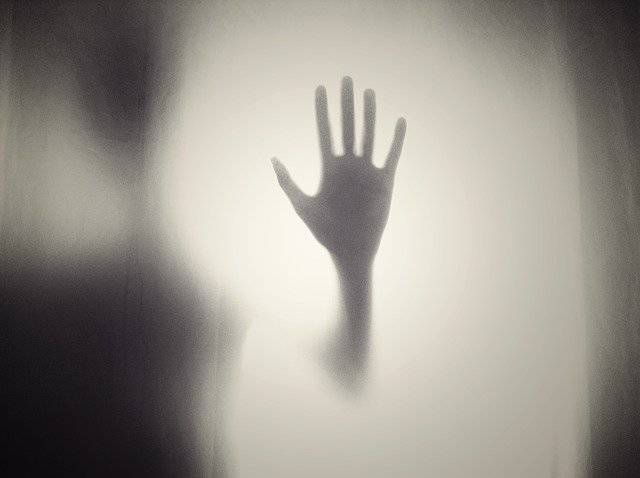 Hand Silhouette Shape - Free photo on Pixabay (757950)