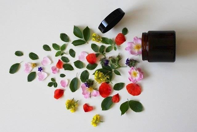 Natural Cosmetics - Free photo on Pixabay (759512)
