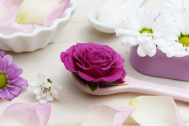 Rose Pink Spoon Shea - Free photo on Pixabay (759551)