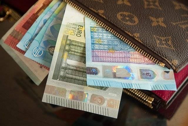 Wallet Vuitton Euro - Free photo on Pixabay (760212)