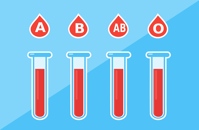 Blood Type Health - Free vector graphic on Pixabay (761942)