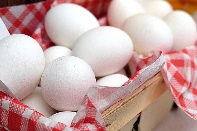 Egg Boiled Eggs Breakfast - Free photo on Pixabay (762045)