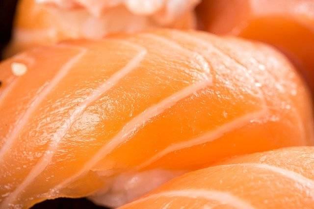 Sushi Niguiri Japanese - Free photo on Pixabay (762769)
