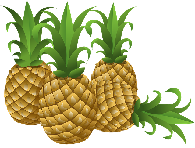 Pineapples Tropical Fruits - Free vector graphic on Pixabay (765859)