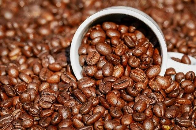 Coffee Beans Cup - Free photo on Pixabay (766433)