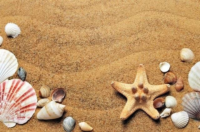 Sea Sand Coast - Free photo on Pixabay (767383)