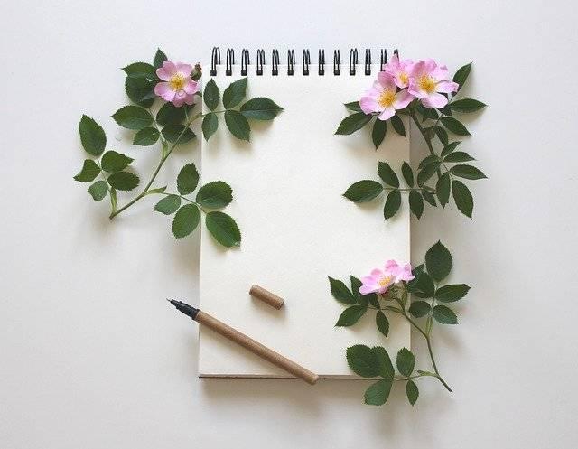 Notebook Write Notes Writing - Free photo on Pixabay (767398)
