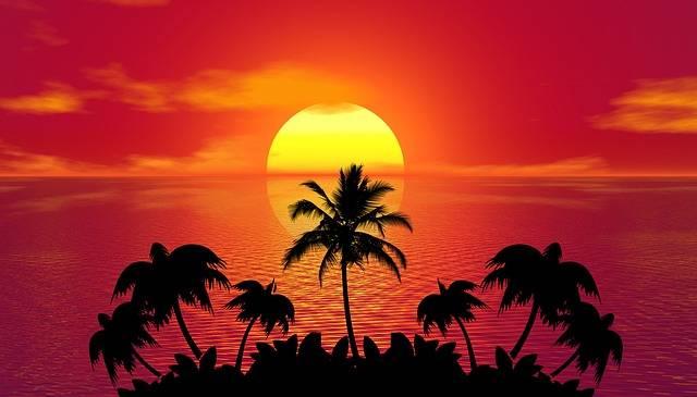Tropical Summer Sunset - Free image on Pixabay (767921)