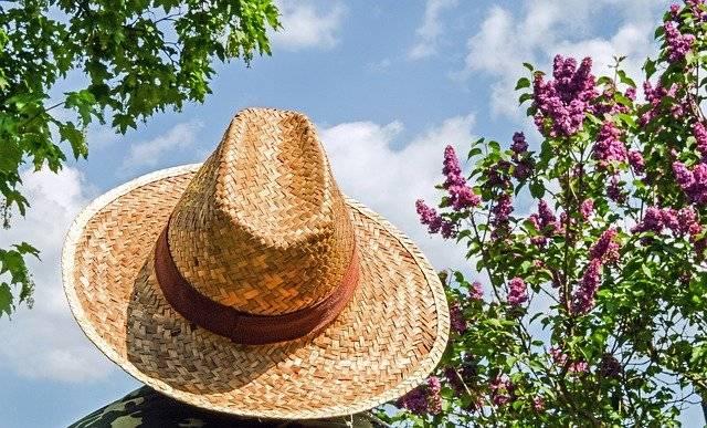 Hat Straw Sun Protection - Free photo on Pixabay (767924)