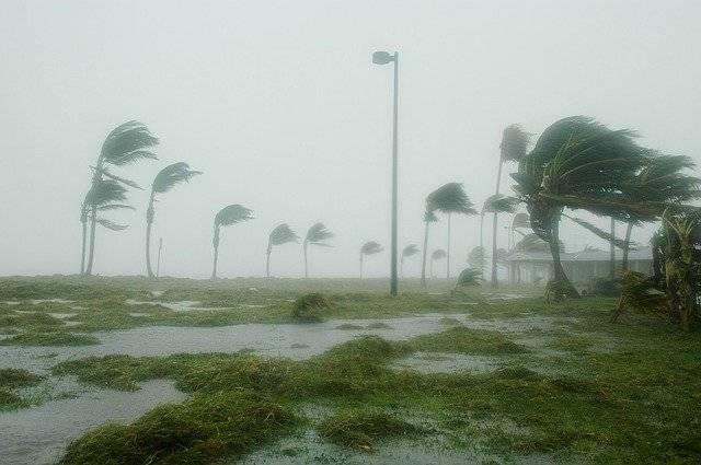 Key West Florida Hurricane Dennis - Free photo on Pixabay (768730)
