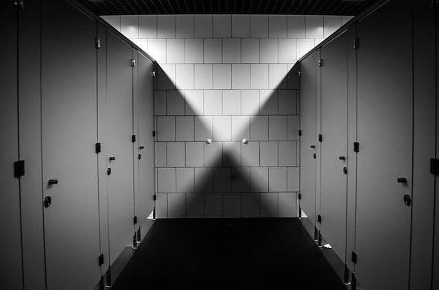 Wc Toilet Purely Public - Free photo on Pixabay (769387)