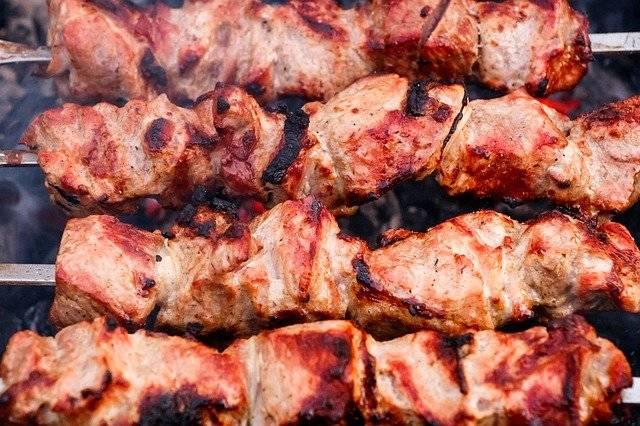Shish Kebab Meat Mangal - Free photo on Pixabay (770985)