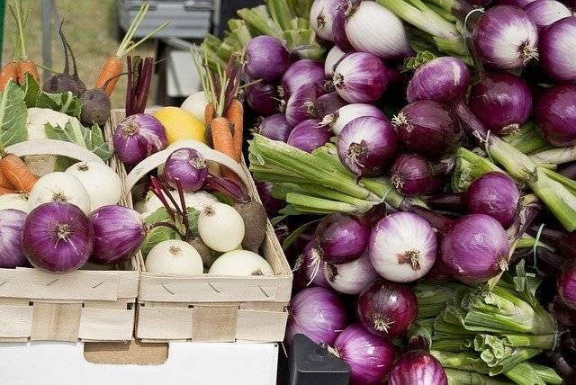 Fresh Vegetables Onion Red - Free photo on Pixabay (771664)