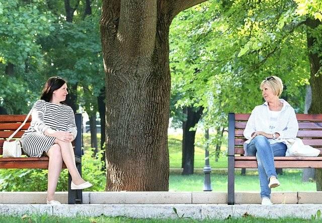 Women Meeting Conversation - Free photo on Pixabay (772137)