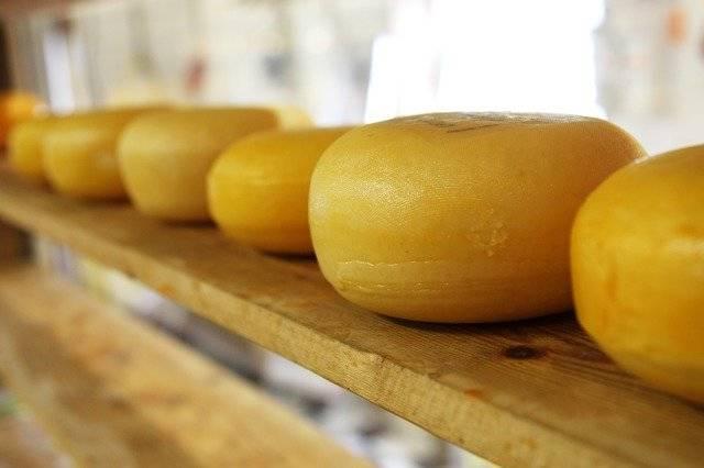 Cheese Circle Circular - Free photo on Pixabay (772274)