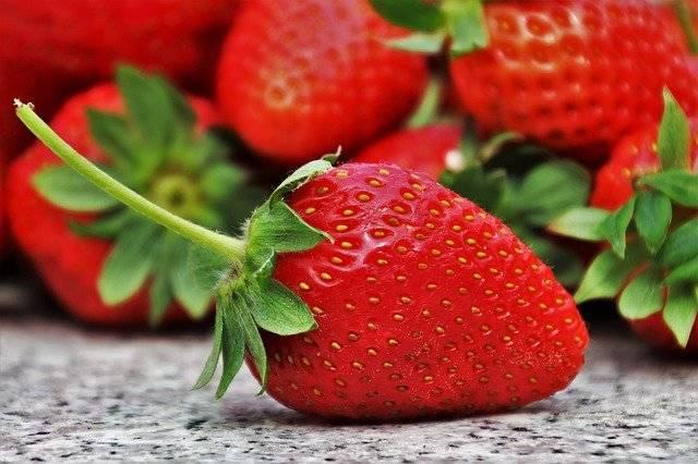 Strawberries Fruit Season - Free photo on Pixabay (772406)