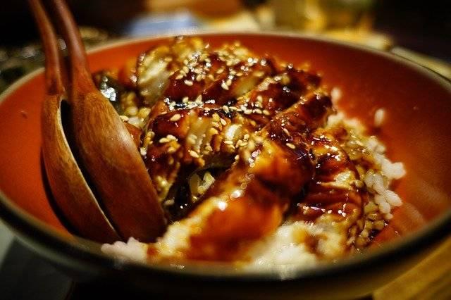 Sushi Japan Cuisine - Free photo on Pixabay (773778)