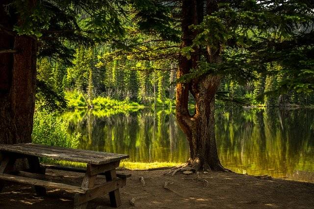 Bench Lake Park Recreational - Free photo on Pixabay (774866)