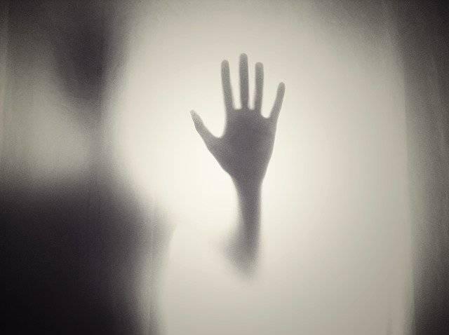 Hand Silhouette Shape - Free photo on Pixabay (777049)