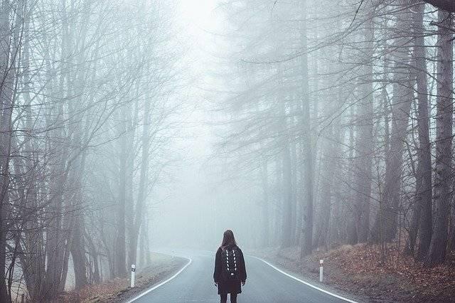 Fog Mist Road - Free photo on Pixabay (777286)