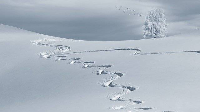 Wintry Backcountry Skiiing Ski - Free photo on Pixabay (778987)