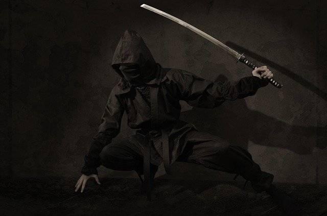 Ninja Warrior Japan - Free photo on Pixabay (779533)