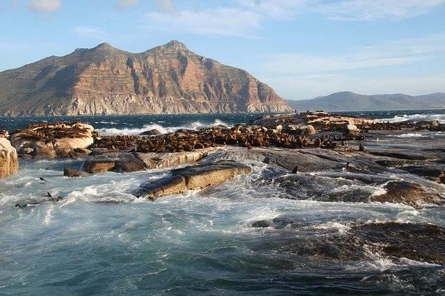 Duiker Island South Africa Cape - Free photo on Pixabay (779635)
