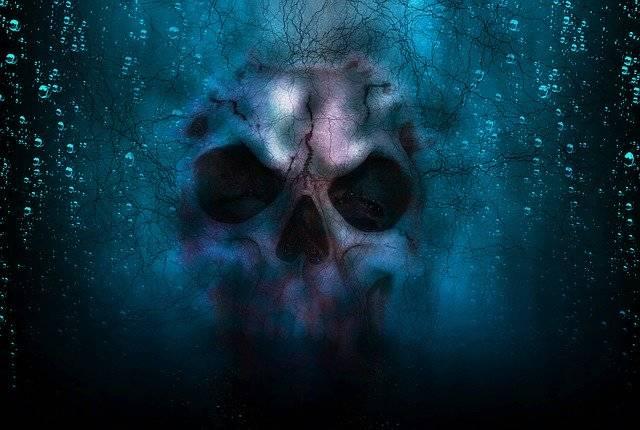 Skull Horror Halloween - Free photo on Pixabay (780962)