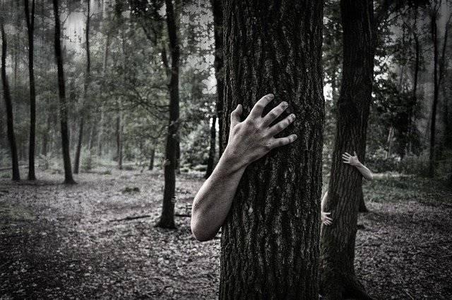 Hands Trunk Creepy - Free photo on Pixabay (781380)