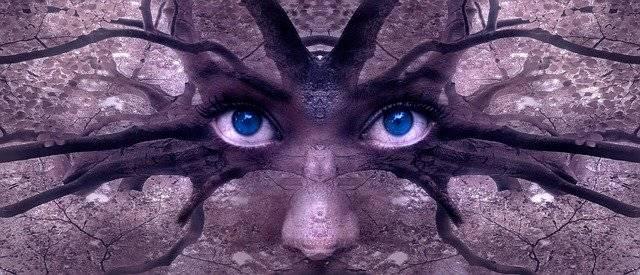 Fantasy Portrait Aesthetic - Free photo on Pixabay (781476)