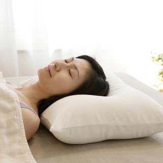 王様の夢枕 | 【公式】王様の夢枕と王様の抱き枕の専門店キング枕.com (741548)