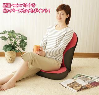 姿勢&骨盤ケアが出来る座椅子(骨盤姿勢ケア座椅子) (741549)